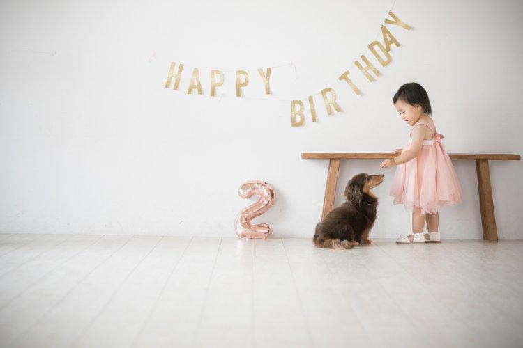 犬とお誕生日